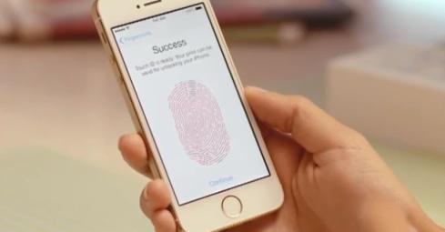 Success Capture Fingerprint